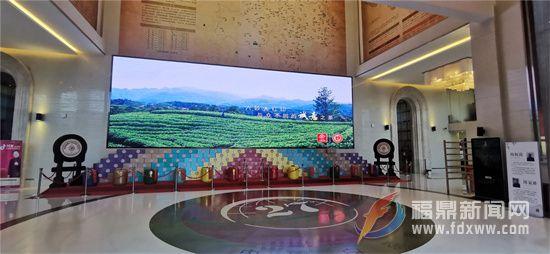 """20000平方米 3000多吨""""私人定制""""茶叶,这座科技茶窖长啥样?"""