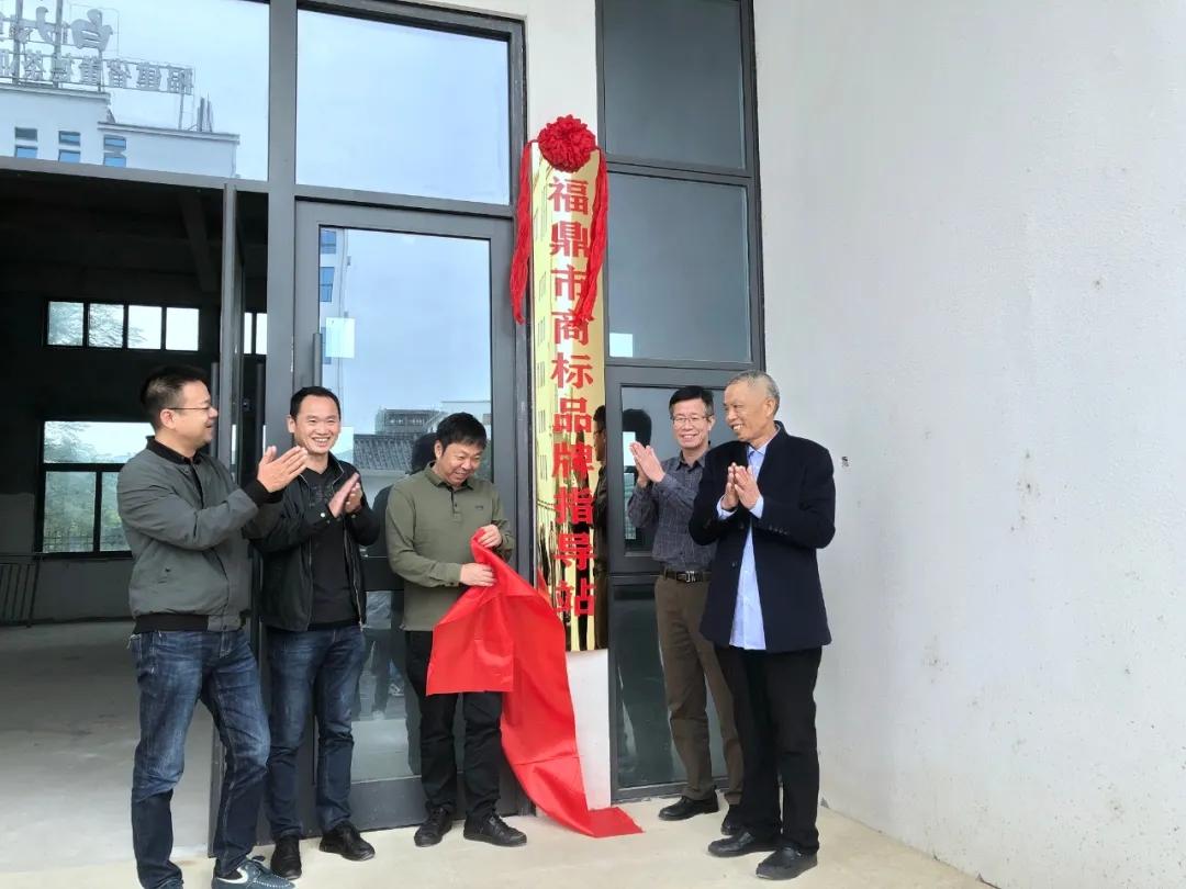 闽东首家商标品牌指导站在茶乡点头揭牌成立